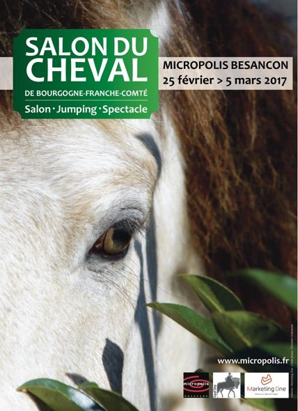 Besan on la premi re dition du salon du cheval de for Salon de the besancon