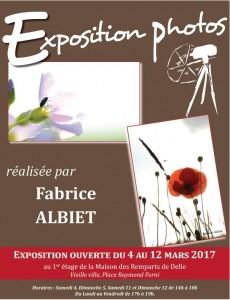 Exposition Fabrice Albiet au Caveau des Remparts de Delle
