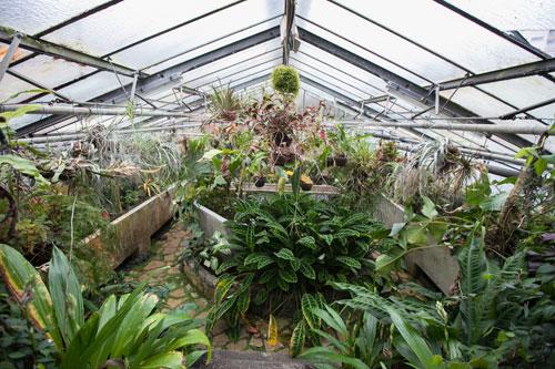visuel-jardin-botanique