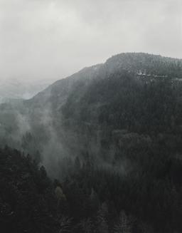 visuel conférence paysage