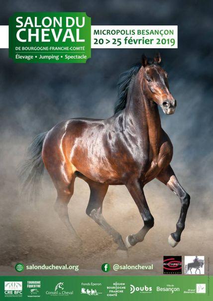 visuel salon du cheval 2019