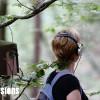 Back To The Trees dans la Forêt de Chaux